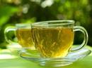 Cẩn thận khi sử dụng quá nhiều trà xanh