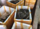 """Bắt quả tang cơ sở chế biến """"chui"""" gần 900 kg nội tạng động vật bẩn"""