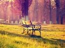 Có nên gặp lại người yêu cũ?