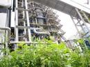 Đắp chiếu, ethanol Dung Quất vẫn tiêu tốn hàng chục tỉ đồng mỗi năm