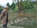 Gần 80 cá sấu trốn trại, dân Trung Quốc sống trong sợ hãi