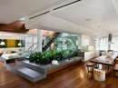 Tạo vườn trong nhà: Xu hướng thiết kế nhà đang 'hot'