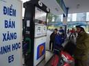 Những mẫu xe nào không nên sử dụng xăng Ethanol?