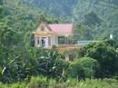 Kỳ tích xóm biệt thự tiền tỷ giữa rừng quế ở vùng đất Phong Hải