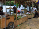 250 đặc sản ba miền bày bán trong công viên ở TP HCM