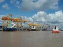 Thêm phí qua cảng, doanh nghiệp than trời