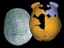"""Phát hiện """"loài người mới"""" ở Trung Quốc, nửa người nửa Neanderthal"""