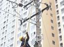 Ngành điện TP HCM tổ chức hội thi thợ giỏi