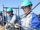 Việt Nam và Ả-rập Xê- út: Lập kênh thông tin xử lý tranh chấp lao động