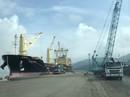 """Cảng Quy Nhơn """"cấm cửa"""" báo chí tác nghiệp?"""