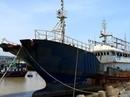 """Bình Thuận: Bán đấu giá """"tàu ma"""" trôi dạt trên biển"""