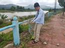 Phá nát kè sông trăm tỉ để … bán phế liệu