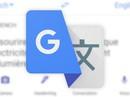 Tính năng dịch qua camera của Google Dịch đã được cập nhật tiếng Việt