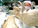 EVFTA: Cơ hội lớn cho nhiều ngành
