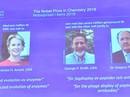Nobel Hóa học 2018: Nghiên cứu mở đường về protein