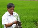 Nông dân bám đất làm giàu