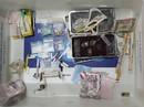 Phát hiện hàng loạt vụ vận chuyển ma túy ở sân bay Cam Ranh