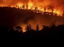 Mỹ: Lửa rừng rực, khói ngút trời ở bang California