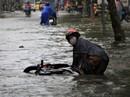 Sáng 26-11, TPHCM nhiều nơi vẫn ngập sâu, rác, nhánh cây gãy la liệt