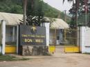 Vàng Bồng Miêu chính thức phá sản, để lại số nợ gần 1.000 tỉ đồng