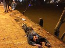 Tông vào gốc mai anh đào ven hồ Xuân Hương, nam thanh niên chết tại chỗ