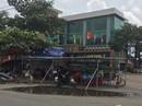 """Chính quyền Đà Nẵng """"đau đầu"""" với môi trường"""
