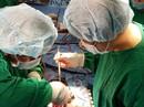Mở 1/3 xương ức để cứu sống bệnh nhân hở nặng van động mạch