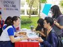 4.000 sinh viên tham dự ngày hội việc làm