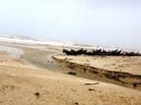 Phát hiện thi thể bị mất đầu trôi dạt vào bờ biển