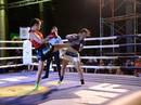 Giải Muay Thái Quốc tế tranh đai USC: Nhiều đại chiến đầy hứa hẹn