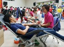 Người cho máu lấy tiền được chi trả như thế nào?