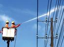 EVNSPC bảo đảm điện cho các ngày lễ, Tết