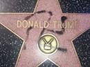 Bắt kẻ phá hoại ngôi sao của Tổng thống Donald Trump