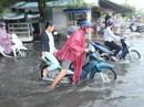 Cuối năm, nhiều tuyến đường ở Bạc Liêu chìm trong biển nước