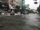 Trận mưa lịch sử nhấn chìm Đà Nẵng