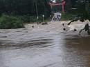 Sau Đà Nẵng, đến lượt nhiều vùng ở Quảng Nam ngập cục bộ