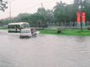 Mưa như trút, đường phố Tam Kỳ thành biển nước