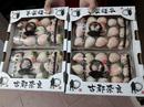 Gần triệu đồng một hộp dâu tây Bạch Tuyết 15 quả biếu Tết