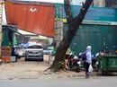 """Khu """"đất vàng"""" Hà Nội được bán gần 500 triệu/m2"""