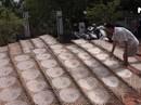 Làng nghề bánh tráng trăm năm hối hả đón Tết