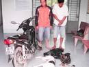 Mang dao kiếm, súng bắn điện gây ra hàng trăm vụ trộm chó