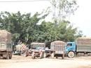 Điều tra vụ việc người dân kéo lên huyện tố bị ép bán nông sản