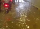 Đà Nẵng: Hầm chui 118 tỉ đồng bị ngấm nước sau 4 tháng thông xe