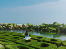 Dạo chơi hết chốn thần tiên ở Phú Yên chỉ với 500.000 đồng
