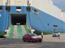 Ô tô Honda nhập khẩu giảm gần 200 triệu đồng, người mua vẫn phải chờ
