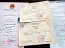 Chánh văn phòng Đảng ủy dùng chứng chỉ giả nộp lấy bằng đại học