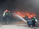 Sự cố khủng khiếp vì đốt cỏ khô ở TP Vũng Tàu