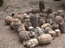 Tá hỏa phát hiện hàng trăm vũ khí nguy hiểm trong vườn nhà