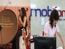 Cổ đông AVG chuyển trả hơn 2.540 tỉ đồng cho MobiFone