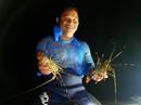 Thích thú theo ngư dân lặn biển bắt tôm hùm ở Huế